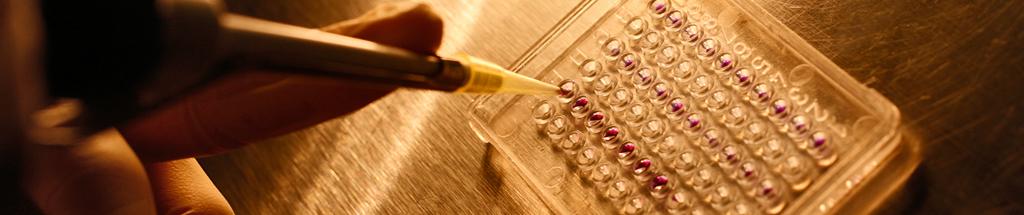 ASPIC - Associação Portuguesa de Investigação em Cancro